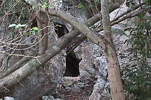 Click for wider view of Cavanaugh Cave entrance